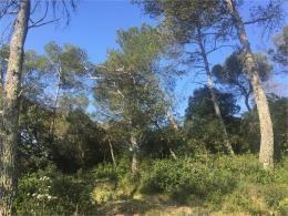 Achat Terrain St Mamert du Gard