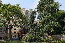Appartement Montrouge &bull; <span class='offer-area-number'>56</span> m² environ &bull; <span class='offer-rooms-number'>3</span> pièces
