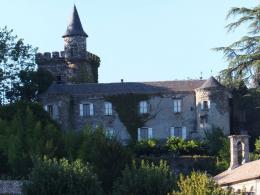 Achat Château 23 pièces St Etienne Vallee Francaise