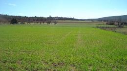 Terrain La Verdiere &bull; <span class='offer-area-number'>2 000</span> m² environ