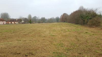 Terrain Torce en Vallee &bull; <span class='offer-area-number'>10 000</span> m² environ