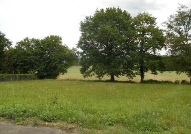 Terrain Garlin &bull; <span class='offer-area-number'>1 390</span> m² environ