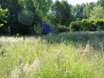 Terrain Cuise la Motte &bull; <span class='offer-area-number'>3 956</span> m² environ