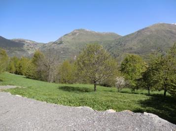 Terrain L Alpe de Mont de Lans &bull; <span class='offer-area-number'>1 682</span> m² environ
