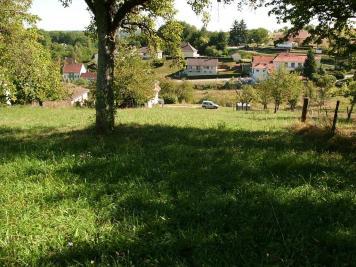 Terrain Niederbronn les Bains &bull; <span class='offer-area-number'>1 640</span> m² environ