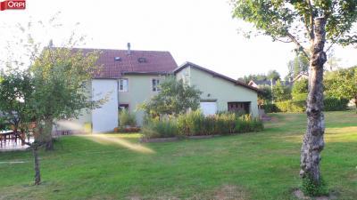 Maison Plainfaing &bull; <span class='offer-area-number'>320</span> m² environ &bull; <span class='offer-rooms-number'>8</span> pièces