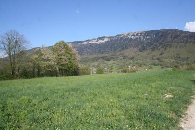 Terrain Annecy &bull; <span class='offer-area-number'>3 405</span> m² environ