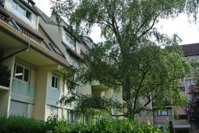 Appartement Kingersheim &bull; <span class='offer-area-number'>77</span> m² environ &bull; <span class='offer-rooms-number'>4</span> pièces