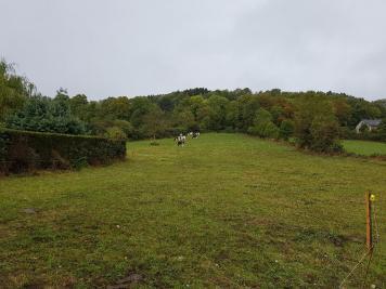 Terrain St Bonnet Pres Orcival &bull; <span class='offer-area-number'>2 714</span> m² environ