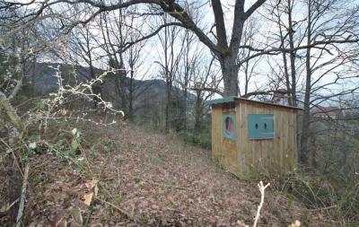 Terrain Dieffenbach au Val &bull; <span class='offer-area-number'>1 304</span> m² environ