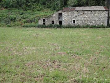 Terrain Riols &bull; <span class='offer-area-number'>2 400</span> m² environ