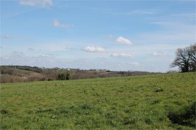 Terrain Montfort en Chalosse &bull; <span class='offer-area-number'>2 224</span> m² environ