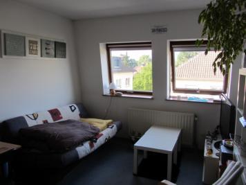 Appartement Illkirch Graffenstaden &bull; <span class='offer-area-number'>20</span> m² environ &bull; <span class='offer-rooms-number'>1</span> pièce
