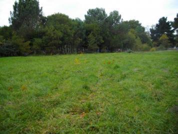 Terrain Vendays Montalivet &bull; <span class='offer-area-number'>1 279</span> m² environ