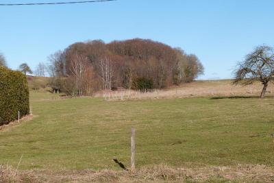 Terrain Traubach le Haut &bull; <span class='offer-area-number'>1 400</span> m² environ
