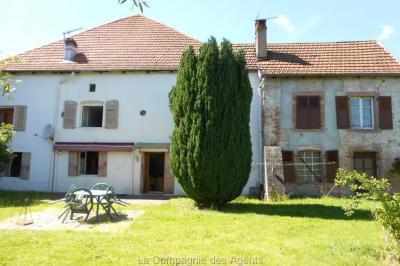 Maison La Petite Raon &bull; <span class='offer-area-number'>300</span> m² environ &bull; <span class='offer-rooms-number'>10</span> pièces
