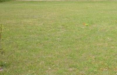 Terrain Arcis sur Aube &bull; <span class='offer-area-number'>1 221</span> m² environ