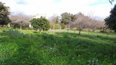 Terrain San Nicolao &bull; <span class='offer-area-number'>1 000</span> m² environ