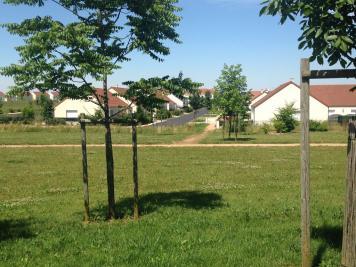 Terrain Meung sur Loire &bull; <span class='offer-area-number'>722</span> m² environ