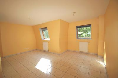 Appartement Schirmeck &bull; <span class='offer-area-number'>28</span> m² environ &bull; <span class='offer-rooms-number'>1</span> pièce