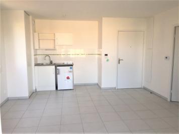 Appartement La Salvetat St Gilles &bull; <span class='offer-area-number'>43</span> m² environ &bull; <span class='offer-rooms-number'>2</span> pièces