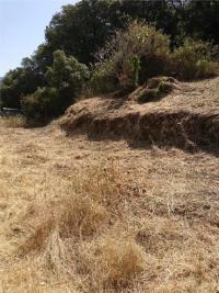 Terrain Petreto Bicchisano &bull; <span class='offer-area-number'>1 300</span> m² environ