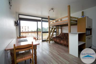 Appartement St Cyprien &bull; <span class='offer-area-number'>26</span> m² environ &bull; <span class='offer-rooms-number'>1</span> pièce