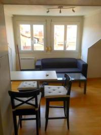 Appartement Grenoble &bull; <span class='offer-area-number'>29</span> m² environ &bull; <span class='offer-rooms-number'>2</span> pièces