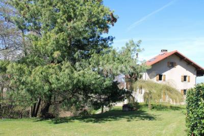 Maison Bons en Chablais &bull; <span class='offer-area-number'>260</span> m² environ &bull; <span class='offer-rooms-number'>8</span> pièces