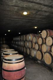 Immeuble Savigny les Beaune &bull; <span class='offer-area-number'>2 000</span> m² environ