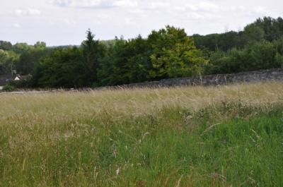 Terrain Gray &bull; <span class='offer-area-number'>1 545</span> m² environ