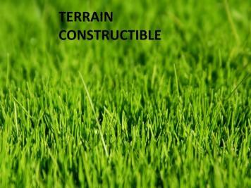 Terrain Faulx &bull; <span class='offer-area-number'>1 800</span> m² environ