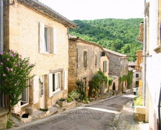 Maison Bruniquel &bull; <span class='offer-area-number'>155</span> m² environ &bull; <span class='offer-rooms-number'>5</span> pièces