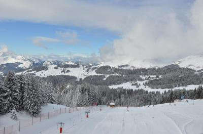 Appartement Avoriaz &bull; <span class='offer-area-number'>43</span> m² environ &bull; <span class='offer-rooms-number'>3</span> pièces