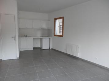 Appartement Lyon 04 &bull; <span class='offer-area-number'>43</span> m² environ &bull; <span class='offer-rooms-number'>2</span> pièces