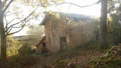 Maison Ainhoa &bull; <span class='offer-area-number'>240</span> m² environ &bull; <span class='offer-rooms-number'>5</span> pièces