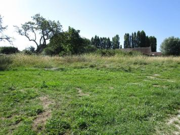 Terrain Vitry aux Loges &bull; <span class='offer-area-number'>2 332</span> m² environ