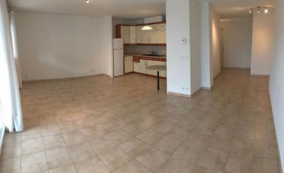 Appartement Annemasse &bull; <span class='offer-area-number'>76</span> m² environ &bull; <span class='offer-rooms-number'>3</span> pièces