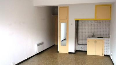 Appartement Canet Plage &bull; <span class='offer-area-number'>23</span> m² environ &bull; <span class='offer-rooms-number'>1</span> pièce