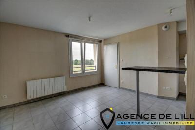 Appartement Selestat &bull; <span class='offer-area-number'>31</span> m² environ &bull; <span class='offer-rooms-number'>2</span> pièces
