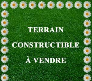 Terrain Dourdan &bull; <span class='offer-area-number'>1 000</span> m² environ
