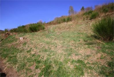 Terrain Fresse sur Moselle &bull; <span class='offer-area-number'>2 000</span> m² environ