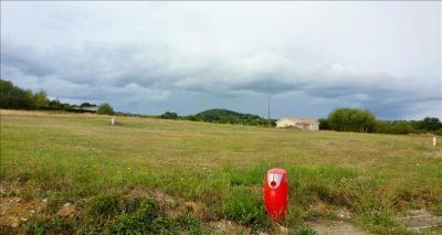 Terrain Moissieu sur Dolon &bull; <span class='offer-area-number'>1 000</span> m² environ