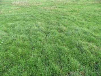 Terrain Vert en Drouais &bull; <span class='offer-area-number'>1 200</span> m² environ