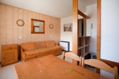 Appartement Les Deux Alpes &bull; <span class='offer-area-number'>28</span> m² environ &bull; <span class='offer-rooms-number'>2</span> pièces
