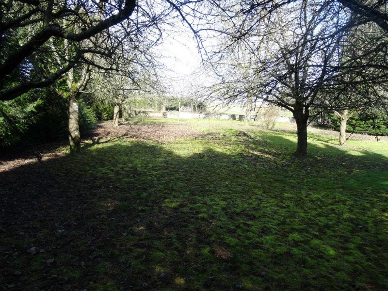 Terrain  1 000 m² environ Morschwiller