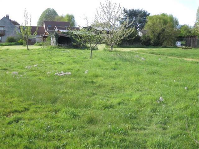 Terrain  1 316 m² environ Adainville