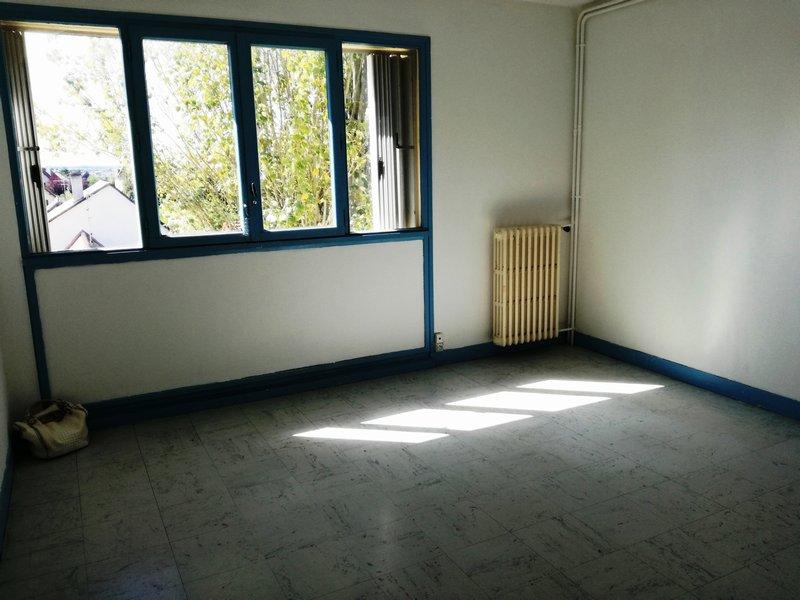 Appartement  29 m² environ  1 pièce