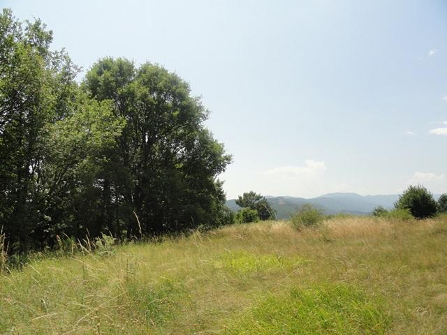 Terrain  1 190 m² environ Ucel