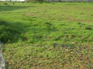 Terrain Surrain • 695 m² environ